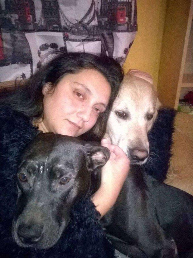ΚΟΜΜΩΤΗΡΙΟ ΖΩΩΝ | DOG SPA | ΝΕΑ ΧΑΛΚΙΔΟΝΑ ΑΤΤΙΚΗΣ - GREEKCATALOG.NET